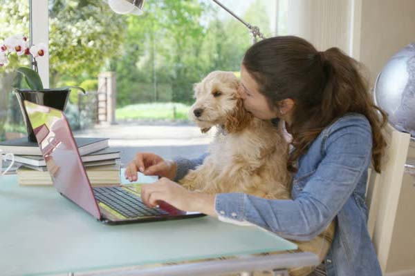 5 Reasons to Own a Pet Franchise with Confidence