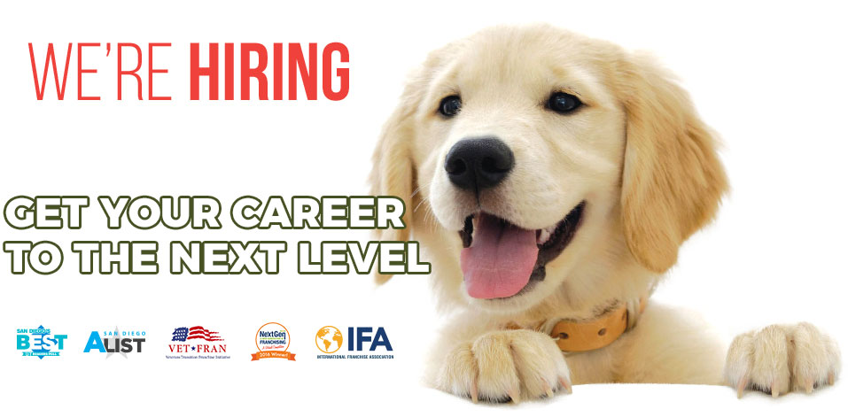 Join our team | Sydnee's Pet Grooming